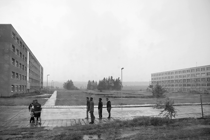 Halberstadt 0386 B